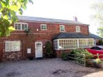 Thumbnail to rent in Holton Road, Tetney, Grimsby