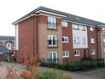 Thumbnail to rent in Broad Cairn Court, Motherwell