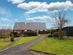 Thumbnail to rent in Caynham, Ludlow