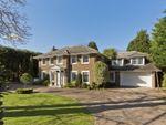 Thumbnail to rent in Cranley Road, Burwood Park, Hersham, Walton-On-Thames