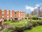 Thumbnail to rent in Touchwood Hall Close, Solihull