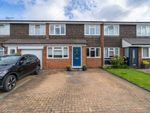 Thumbnail for sale in Ash Hill Close, Bushey