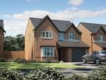 """Thumbnail to rent in """"The Hemsby"""" at Parkers Road, Leighton, Crewe"""