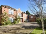 Thumbnail to rent in Shrubbs Hill Lane, Ascot