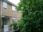 Thumbnail to rent in Figtree Hill, Hemel Hempstead