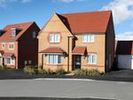 "Thumbnail to rent in ""Cambridge"" at Livingstone Road, Corby"