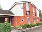 Thumbnail to rent in Poundlock Avenue, Stoke-On-Trent