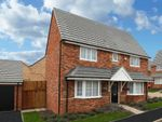 "Thumbnail to rent in ""Alnwick"" at Blackthorn Crescent, Brixworth, Northampton"