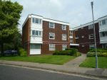 Thumbnail to rent in Somerstown, Chichester