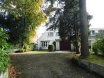 Thumbnail to rent in Tinsley Lane, Crawley