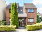 Thumbnail to rent in Rothschild Road, Chiswick, London