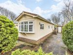 Thumbnail to rent in The Spinney, Deanland Wood Park, Golden Cross