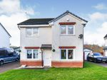 Thumbnail to rent in Osprey Road, Paisley