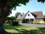 Thumbnail for sale in Court Drive, Maidenhead, Berkshire