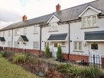 Thumbnail to rent in Captain Gardens, Colchester