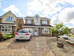 Thumbnail to rent in The Pastures, Coulby Newham, Middlesbrough