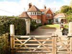 Thumbnail for sale in Malthouse Lane, Hambledon, Godalming, Surrey