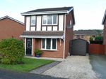 Thumbnail for sale in Pavilion Court, Llanidloes Road, Newtown, Powys