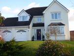 Thumbnail to rent in Clos Yr Onnen, Abergwili, Carmarthen