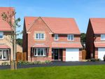 "Thumbnail to rent in ""Halesowen"" at Blackthorn Crescent, Brixworth, Northampton"
