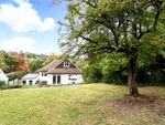 Thumbnail to rent in Loxford Road, Caterham, Surrey
