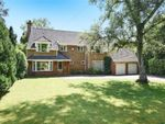 Thumbnail for sale in Hook Road, Ampfield, Hampshire
