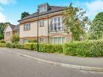 Thumbnail to rent in Birch Grove, Felbridge, East Grinstead