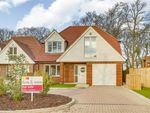 Thumbnail for sale in West Close, Polegate