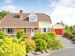 Thumbnail to rent in The Poplars, Donaghcloney, Craigavon, County Armagh