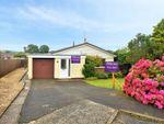 Thumbnail to rent in St. Davids Road, Pembroke