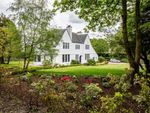 Thumbnail to rent in The Homestead, Golf Course Road, Bridge Of Weir, Renfrewshire