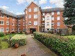 Thumbnail for sale in Sycamore Court, Aylesbury