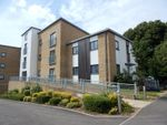 Thumbnail to rent in Tower Road, Felixstowe