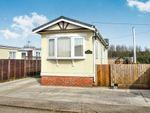 Thumbnail to rent in Pioneer Park, Eye, Peterborough