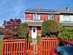 Thumbnail to rent in Alston Walk, Peterlee