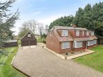 Thumbnail for sale in Detached House & Paddock, The Common, Sissinghurst, Cranbrook