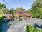 Thumbnail to rent in Felcot Road, Furnace Wood, West Sussex