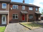 Thumbnail for sale in 16, Ravenhill Court, Belfast