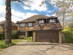 Thumbnail for sale in High Pine Close, Weybridge, Surrey