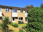 Thumbnail for sale in Timber Close, Worthing
