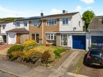 Thumbnail for sale in Pinewood Hill, Talbot Green, Pontyclun