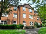 Thumbnail to rent in Athelstan Walk North, Welwyn Garden City