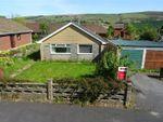 Thumbnail for sale in Hazlemere Estate, Rhayader, Powys
