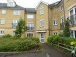 Thumbnail to rent in Clarendon Way, Colchester
