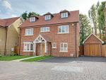 Thumbnail to rent in Wallen Park, Springhall Road, Sawbridgeworth, Hertfordshire