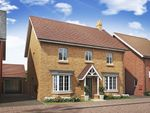 "Thumbnail to rent in ""Bradgate"" at Alwin Court, Great Denham, Bedford"