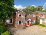 Thumbnail for sale in Hunting Gate, Hemel Hempstead, Hertfordshire