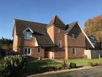 Thumbnail to rent in Caigers Green, Burridge, Southampton