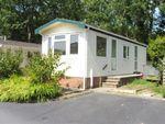 Thumbnail to rent in Ashley Wood, Tarrant Keyneston, Blandford Forum