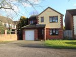 Thumbnail to rent in Charles Melrose Close, Mildenhall, Bury St. Edmunds